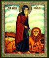 Икона: Преподобный Герасим