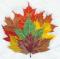 """Мастерская """"Православное узорье"""", вышивка: Пучок опавших листьев показывает все цвета осени."""