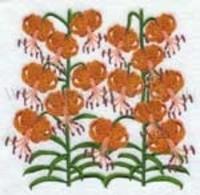 Полосатые лилии
